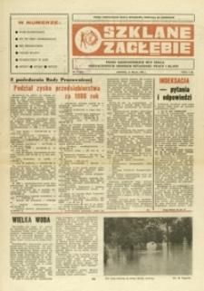Szklane Zagłębie : pismo Krośnieńskich Hut Szkła odznaczonych Orderem Sztandaru Pracy I klasy. - 1989, nr 9 (27 maj) = 311